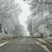 Do Polski powróciła zima. Synoptycy ostrzegają przed opadami śniegu