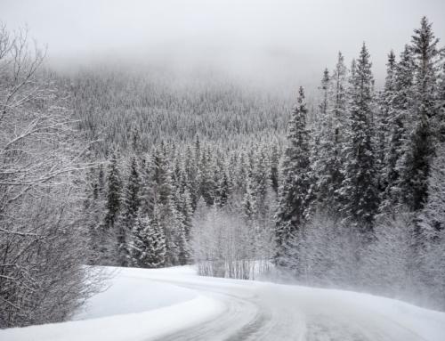 Gdzie opony zimowe w Europie są obowiązkowe?