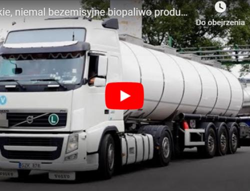 Polskie, niemal bezemisyjne biopaliwo produkowane z… odpadów z rzeźni.