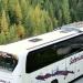 Dlaczego wybieramy autobusy i gdzie podróżujemy najczęściej?